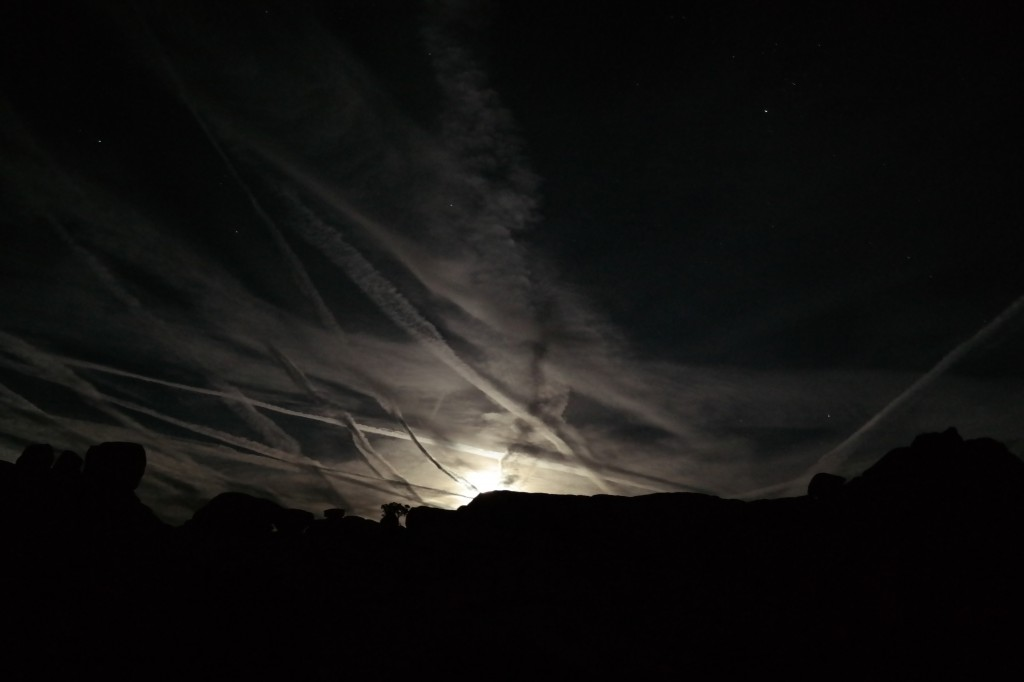 Contrails in the moonlit sky over Joshua Tree National Park