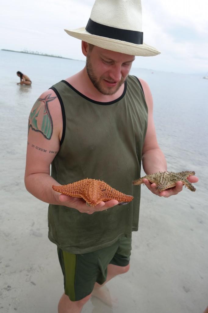Giant starfish!